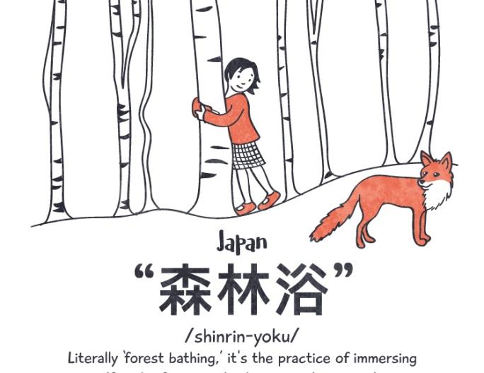 日本森林浴